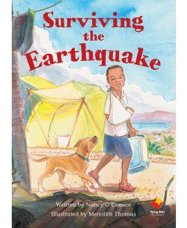 Surviving the Earthquake