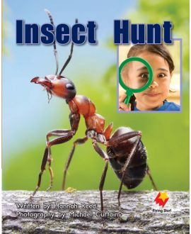 Insect Hunt