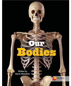 Our Bodies
