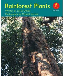 Rainforest Plants