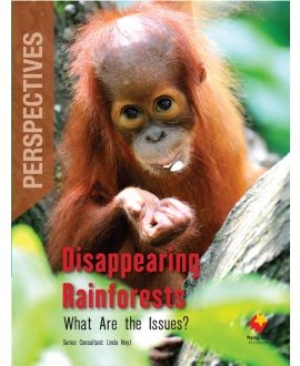 Disappearing Rainforests: What Are the Issues?