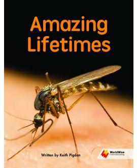 Amazing Lifetimes