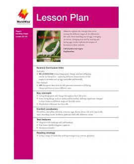 Lesson Plan - Silkworms
