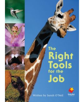 The Right Tools for the Job