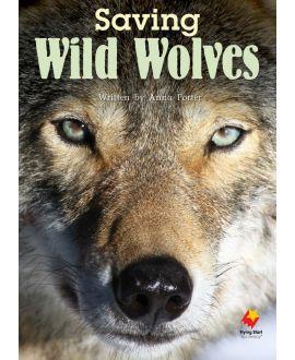 Saving Wild Wolves