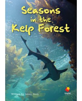 Seasons In the Kelp Forest