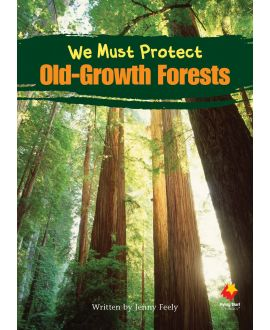 We Must Protect Old Growth Forests