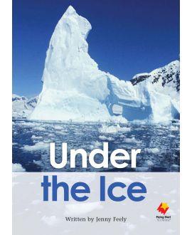 Under the Ice