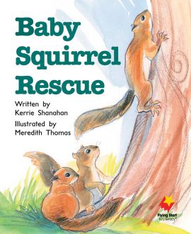 Baby Squirrel Rescue