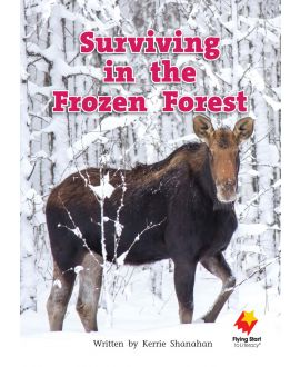 Surviving in the Frozen Forest