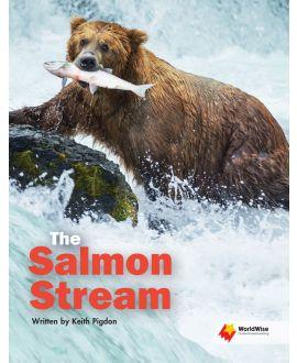The Salmon Stream