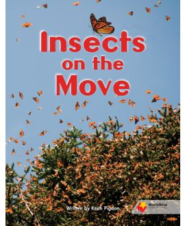 Insects on the Move
