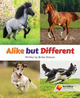 Alike but Different