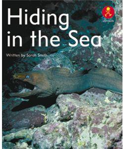 Hiding in the Sea