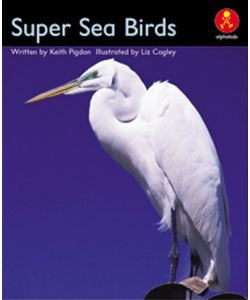 Super Sea Birds