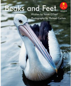 Beaks and Feet