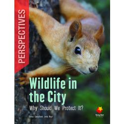 Wildlife in the City: Why Should We Protect It?