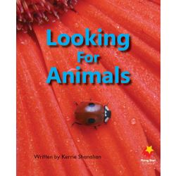 Looking for Animals