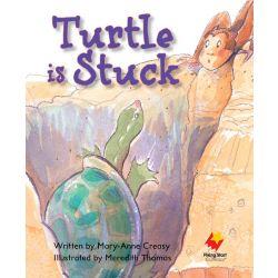 Turtle is Stuck